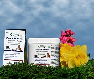 Organic Plaque Remover Dental and Digestion Food Additive