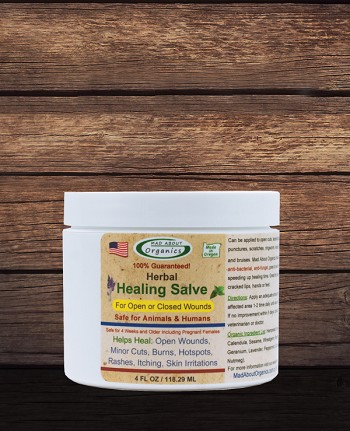 Organic Healing Herbal Salve 4oz